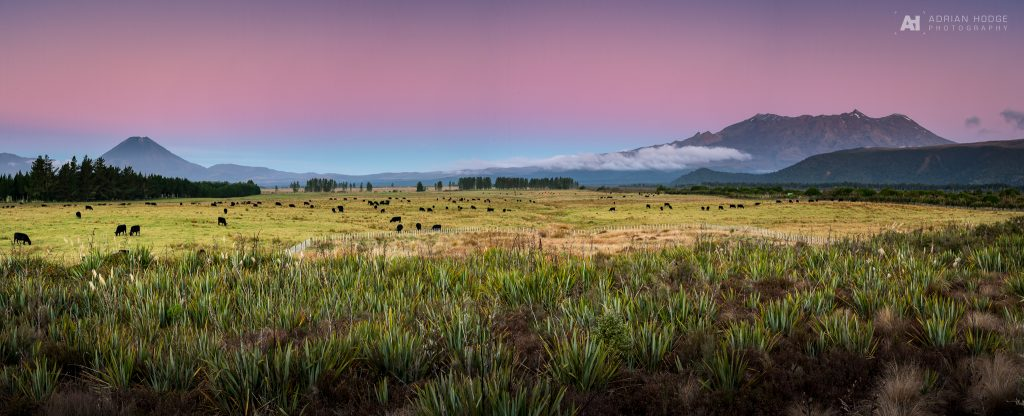 Tongariro Twilight