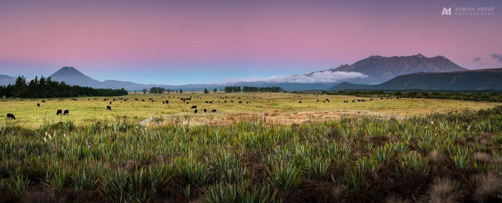 Tongariro Twilight