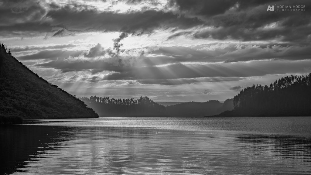A sunset shot over Lake Rotokakahi, pine trees silhouette against the setting sun, ripples on the water and crepuscular rays streaming through the clouds